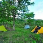 自宅の庭でキャンプしてみた!雨対策は?エアーベッドが暑さを抑える!