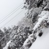 鹿児島で雪!2018年初雪 これからどうなる?