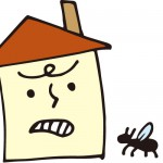 シロアリが鹿児島で大発生!駆除はどうする?