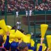 鹿児島樟南高校野球部が甲子園へ!メンバーと監督は?